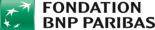 logo à ajouter_fondation-bnp-paribas-logo-vector
